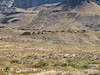 Burro Mesa trail from wash (5)