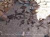Tule Springs artifacts
