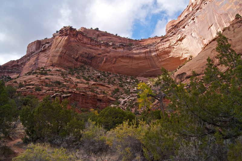 Looking up from the floor of Monument Canyon; Colorado National Monument
