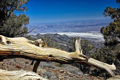 death-valley-wildrose-view-7