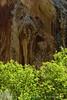 Box Canyon, Josie's DINO UT (2)