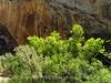 Box Canyon, Josie's DINO UT (4)