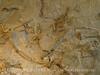 Quarry fossils, DINO UT (34)