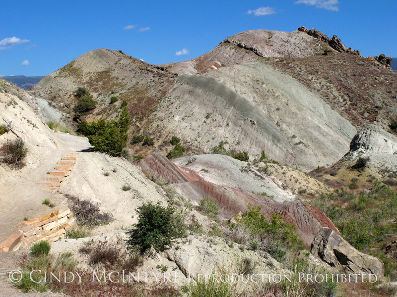Fossil Discovery Trail, DINO UT (4)