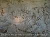 Quarry fossils, DINO UT (15)