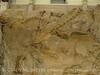 Quarry fossils, DINO UT (47)