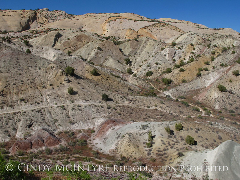 Fossil Discovery Trail, DINO UT (1)