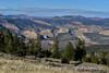 Canyon Overlook, DINO CO (1)