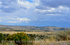 Canyon Overlook, approaching rain, DINO CO (6)