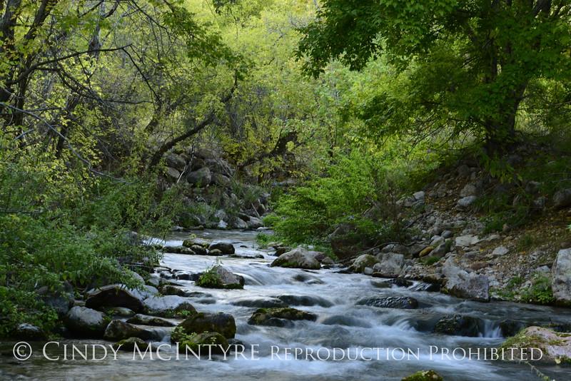 Jones Creek, Jones Hole, DINO UT (1)