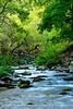 Jones Creek, Jones Hole, DINO UT (4)