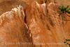 Petroglyphs, Deluge Shelter, Jones Hole, DINO UT (3)