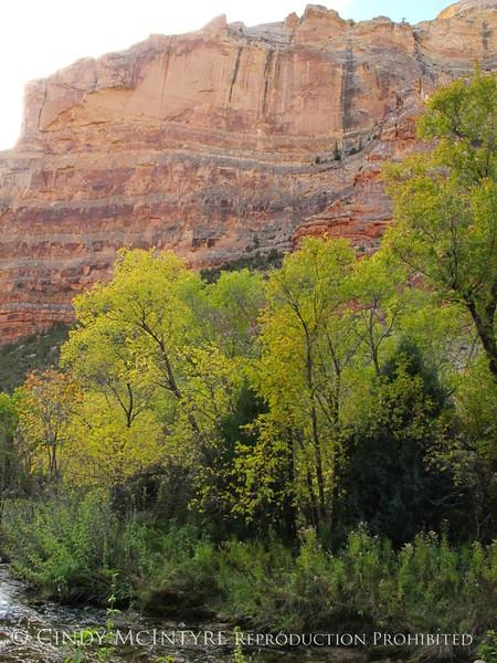 Jones Hole, DINO UT (13)