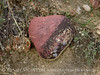 Heart rock, Ruple Pt Trail, DINO CO (2)