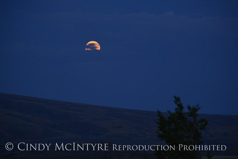 Moonrise, Canyon Overlook, DINO CO (5)
