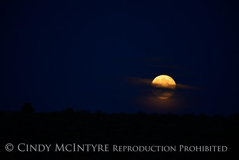 Super Moon, 7-12-14, DINO CO (3)
