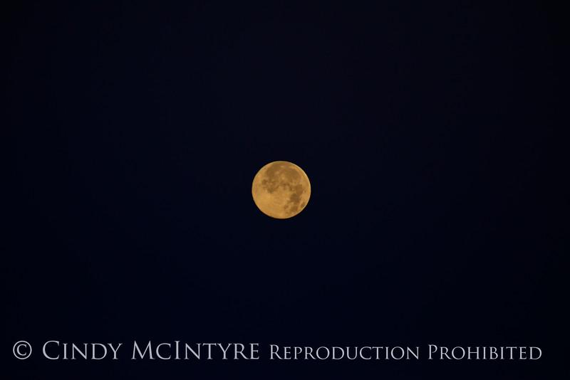 Full Moon (3)