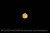 Super Moon, 7-12-14, DINO CO (12)