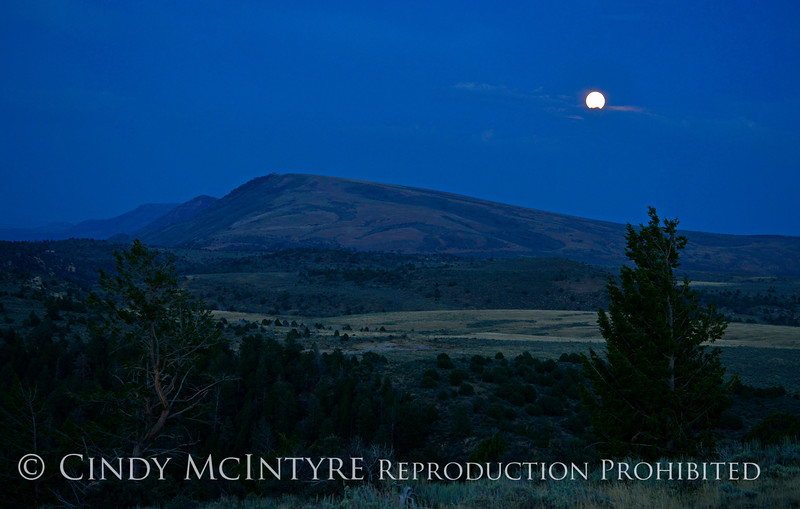 Moonrise, Canyon Overlook, DINO CO (11)