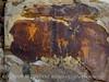 McKee Springs Petroglyphs, DINO, UT (12)