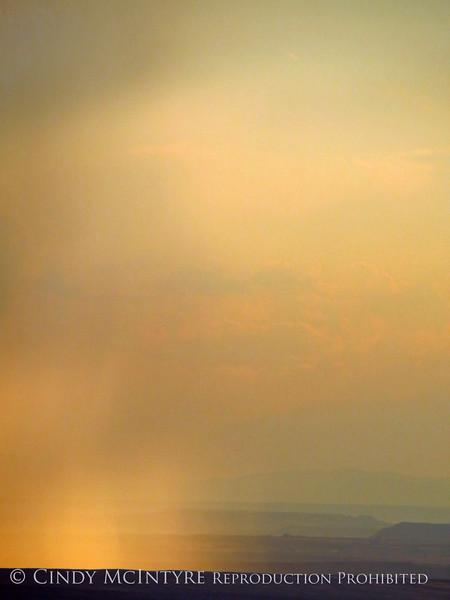 Rain Showers and Sunbeams, DINO CO (22)