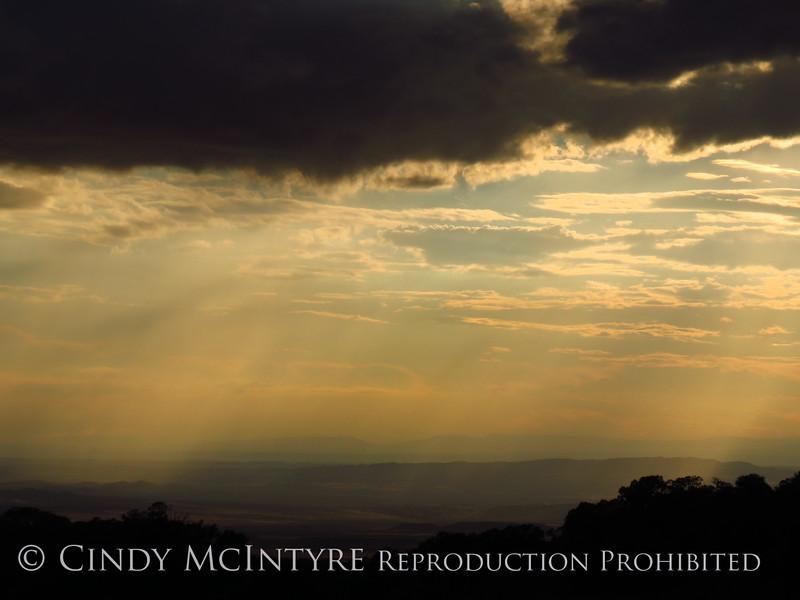 Rain Showers and Sunbeams, DINO CO (17)