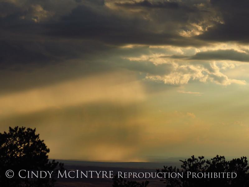 Rain Showers and Sunbeams, DINO CO (19)