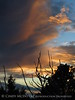 View fm Plug Hat Butte after storm, DINO CO (52)