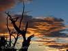 View fm Plug Hat Butte after storm, DINO CO (54)