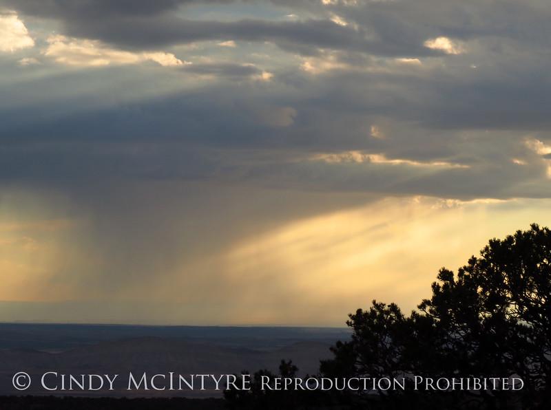 Rain Showers and Sunbeams, DINO CO (8)