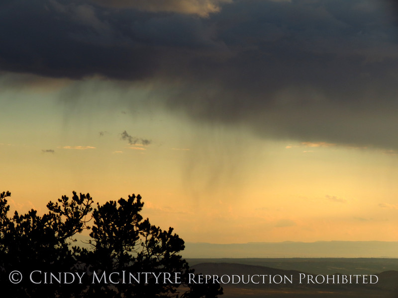 Rain Showers and Sunbeams, DINO CO (38)