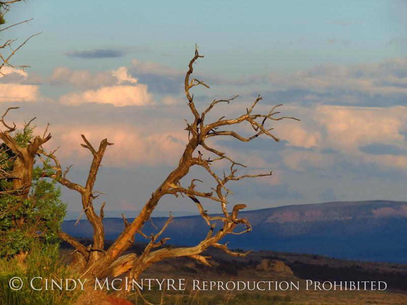 View fm Plug Hat Butte after storm, DINO CO (13)