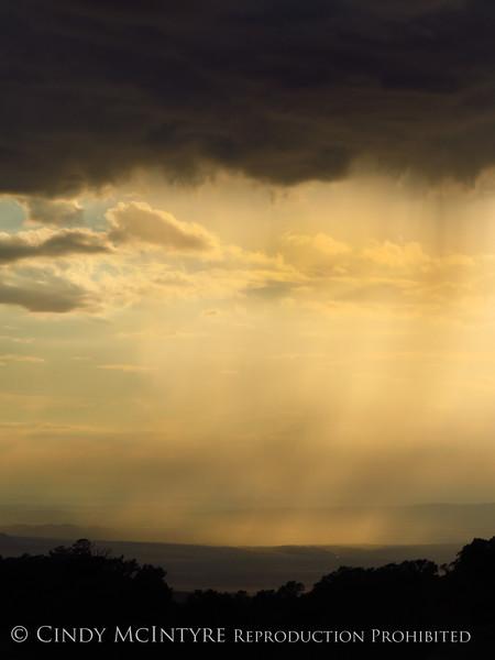Rain Showers and Sunbeams, DINO CO (32)