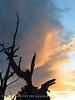 View fm Plug Hat Butte after storm, DINO CO (48)