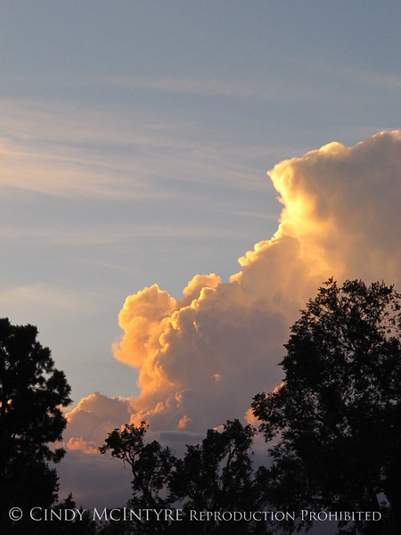 Thundercloud at sunset, DINO CO (3)