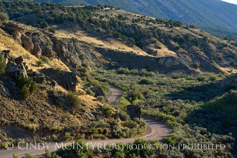 View fm McKee Springs Petroglyphs, DINO UT