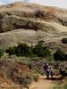 Sound of Silence trail, DINO UTAH (9)