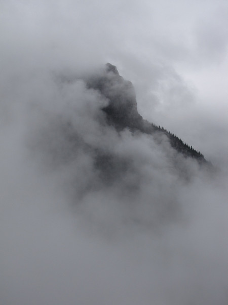 Red Bus Tour:  into the clouds near Logan Pass