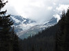 Red Bus Tour:  Jackson Glacier