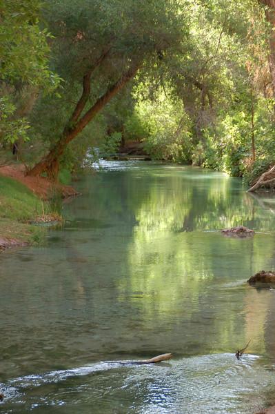 Havasu Creek Campsite