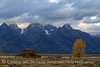 John Moulton Barn, Grand Teton NP WY (1)