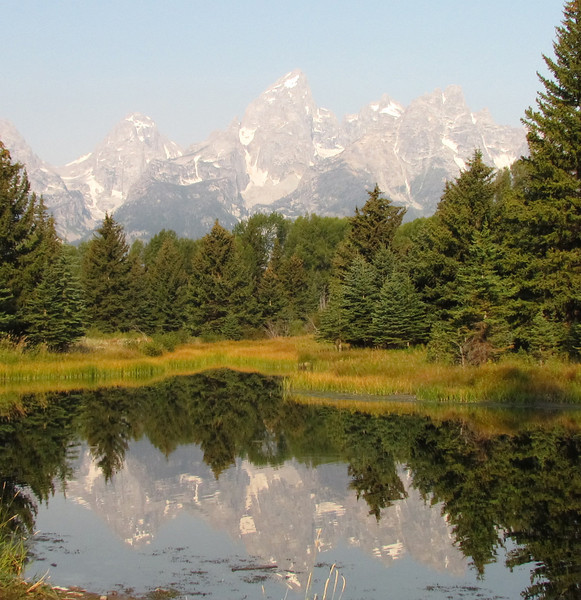 Nice reflection at Schwabacher Landing.