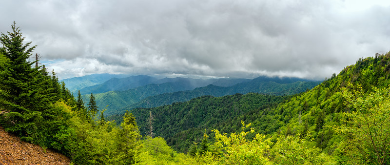 The Boulevard Trail - Great Smokey Mountains National Park - TN - Panorama
