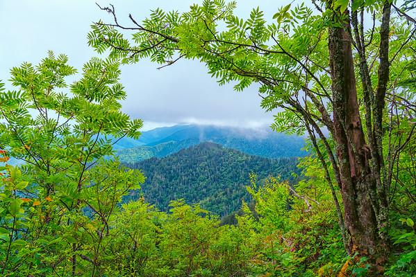 The Boulevard Trail - Great Smokey Mountains National Park - TN