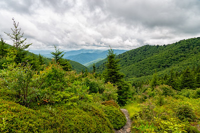 The Real Charlie's Bunion Trail - Great Smokey Mountains National Park - TN
