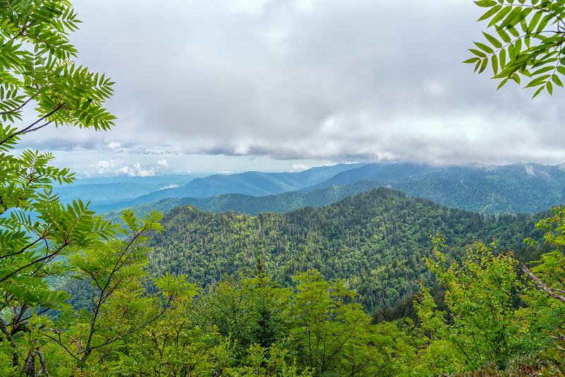 The Boulevard Trail - Great Smokey Mountains National Park - TN-8