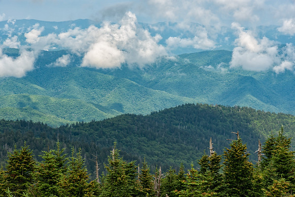 Clingman's Dome - Great Smokey Mountains National Park - TN-3