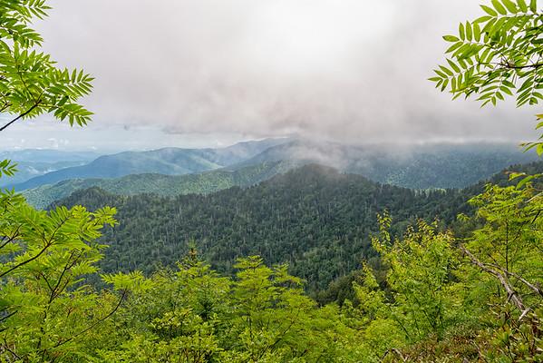 The Boulevard Trail - Great Smokey Mountains National Park - TN-4