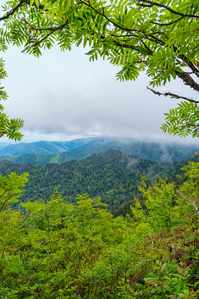 The Boulevard Trail - Great Smokey Mountains National Park - TN-2