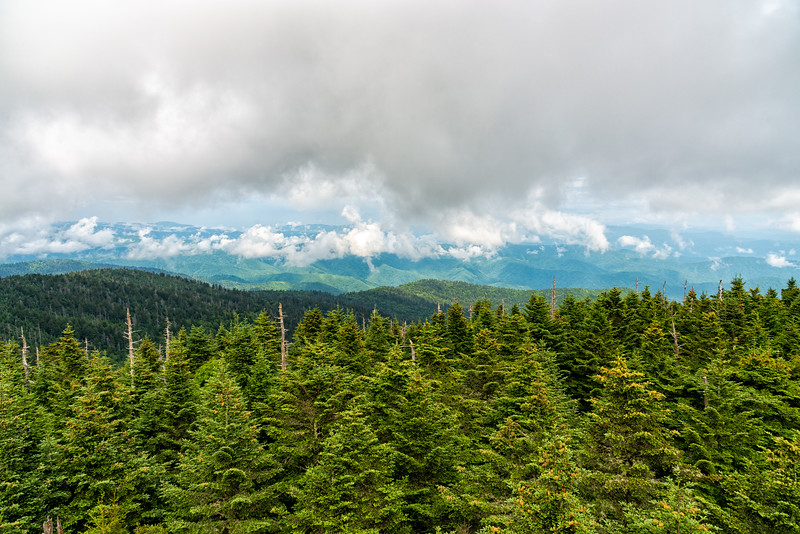 Clingman's Dome - Great Smokey Mountains National Park - TN